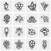 Flower icons set on gray — Stock Vector