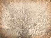 Sfondo carta stropicciata vintage con albero — Foto Stock