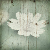 Vintage blooming flower on wood wall — Stock Photo