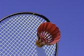 Badminton dourado — Foto Stock