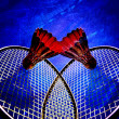 Badminton Rackets and Shuttlecocks — Stock Photo
