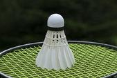 Ready for badminton — Stock Photo