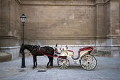 Cathedral and carriage — Stock Photo