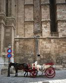 Cattedrale e carrozza — Foto Stock