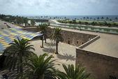 Palma View — Stok fotoğraf