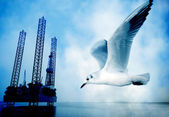 Seagull and oil rig — Stock Photo