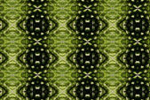 Green plant pattern — Stock Photo