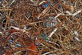 Closeup cable — Stock Photo