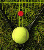 Racket and ball on grass — Stock Photo