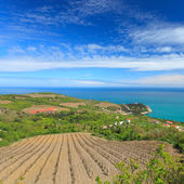 Vineyard and villages in coast. Crimea. Russia — Stock Photo