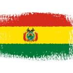 Brushstroke flag Bolivia — Stock Vector #45705769