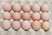 Tray with brown eggs — Stock Photo