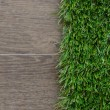 Stock Photo: Artificial grass and