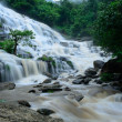 Mae Ya waterfall is bigest waterfal in Chiang Mai — Stock Photo