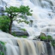 Mae Ya waterfall is bigest waterfal in Chiang Mai — Stock Photo #31637535