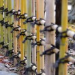 Japanese style Bamboo fences — Stock Photo