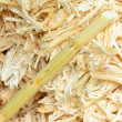 Mashed sugarcane — Stock Photo #31737293