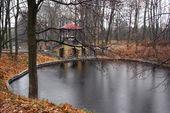 Herfst park in regenachtige dag — Stockfoto