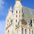 St. Stephan cathedral in center of Vienna — Stock Photo #51130239