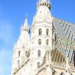 St. Stephan cathedral in center of Vienna — Stock Photo #51130585