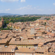 Stock Photo: Sunny day in Siena, Italy