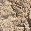 Stock Photo: Texture of volcanic tuff in Pompeii