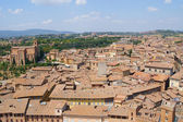 Sunny day in Siena, Italy — Stockfoto