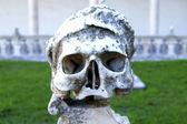 Marble skull — Stock Photo