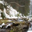 Carpathians - Stock Photo
