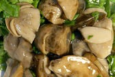 Marinated mushrooms — Stock Photo