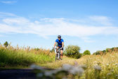 Mountain bike cyclist on country road. — Stockfoto