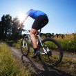 Riding mountain bike — Stock Photo #33033885