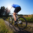Stock Photo: Riding mountain bike