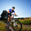 Stock Photo: Cyclist riding mountain bike