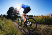 Riding mountain bike — Stock Photo