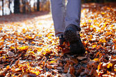 Autumn hiking — Stock Photo