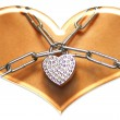 Necklace — Stock Photo #12162567