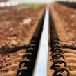 Railroad track - Stock Photo