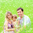 Young family on the field — Stock Photo