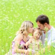 Young family on the field — Stock Photo #12164947