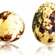 Stock Photo: Eggs: Quail