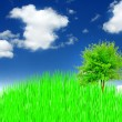 Sky with a tree - Stock Photo
