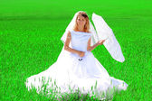 Bride on a field of wheat — Stock Photo