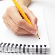 Woman's hand writing in a notebook with a pen — Stock Photo