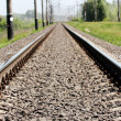 Railroad — Stock Photo #13831922