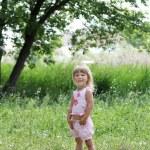 Beautiful little girl on nature — Stock Photo #13831946
