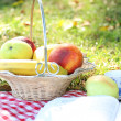 Royalty-Free Stock Photo: Fruit outdoors at picnic