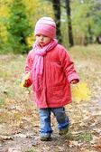 Krásná holčička v podzimním parku — Stock fotografie
