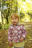 A beautiful little girl in autumn park — Stock Photo