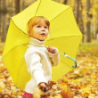 Beautiful little girl in the autumn forest with umbrella — Stock Photo #18005701
